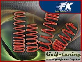 Ford Focus 2 DB3 04-10 Комплект пружин с занижением -40мм