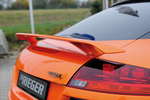 Audi TT 8J 06-14 Купе/Роадстер Спойлер на крышку багажника