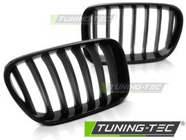 BMW X3 F25 10-16 Решетки радиатора (ноздри) матовые