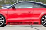 Audi TT 8J 06-14 Coupe/Roadster Накладки на пороги