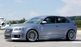 Audi A3 8P 03- 3Дв Накладки на пороги